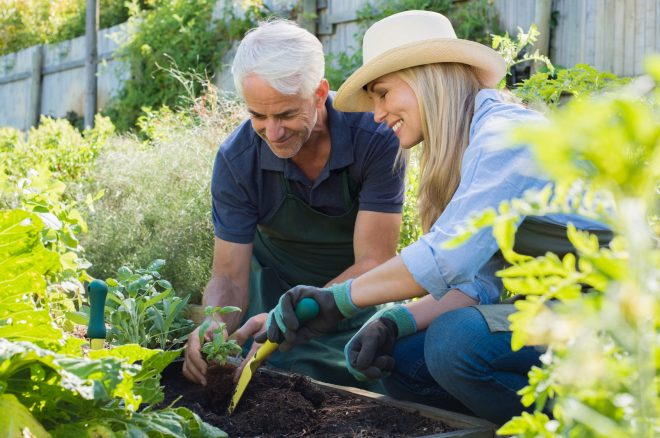 chiropractic tips for gardening body soul chiropractic